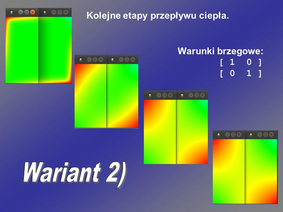 Wariant 2) Kolejne etapy przepływu ciepła. Warunki brzegowe: [ 1 0 ]